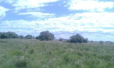 Campo Ganadero 361 Ha - Coneat 127