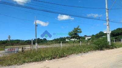 Área 30.000 M² (3 Ha) Beira De Pista Em Abreu E Lima - Pe - 1350