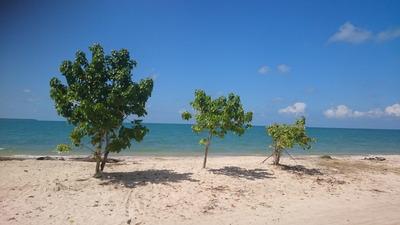 Lotes Frente Al Mar En Primera Linea De Playa. Playa Blanca.