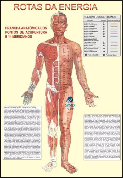 Mapa Corpo Humano Rotas Energia Acupuntura 95x