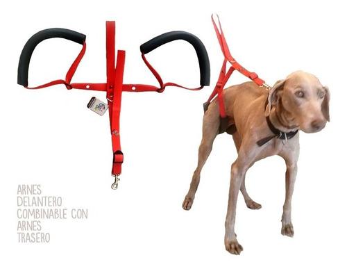 Arnes Para Perros Con Discapacidad En Las Patas Traseras