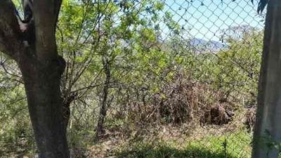 Venta/terreno/paseos Del Bosque Naucalpan