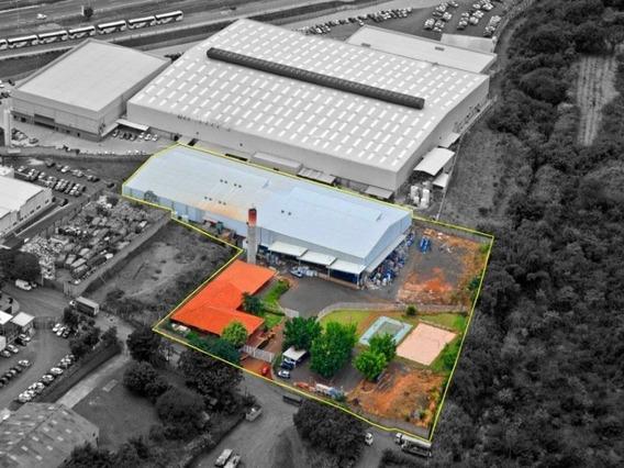 Galpão Industrial Para Locação Em Campinas Sp - Gl00063 - 31963550