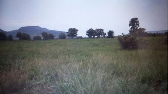 Fazenda A Venda Em Porto Nacional - To, ( Pecuária ) - 506