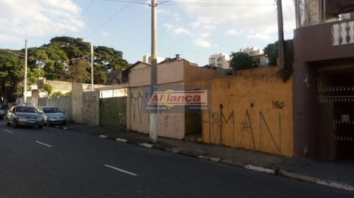 Terreno Comercial À Venda, Macedo, Guarulhos. - Ai4044