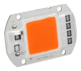 Led Chip 50w Alta Potencia +driver (220v) Full Spectrum