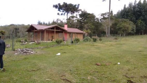 Sítio / Chácara Para Venda Em São José Dos Pinhais, Campina Do Taquaral - 284