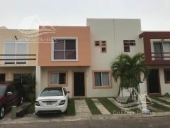 Casa En Renta En Cancun/almena/sm 523