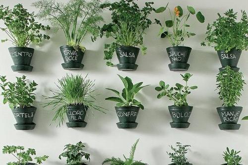 Imagem 1 de 5 de Assistência Técnica De Jardinagem