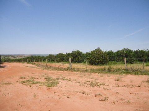 Fazenda 75 Alqueires Rural À Venda, Paulistânia Sp - Fa0039