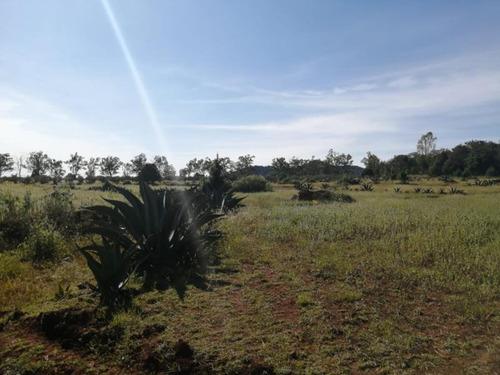 Imagen 1 de 12 de Terreno En Venta San José Ocotillos