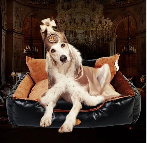 Cama Para Perros Extra Grandes Ideal Para 1 O 2 Perros