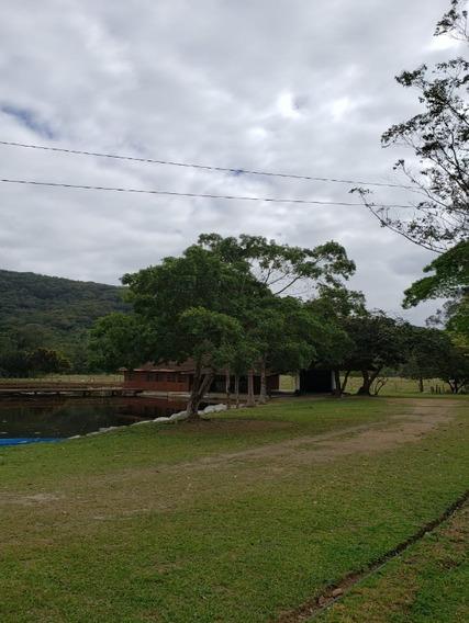 Sitio Casa Em Camboriu Com Benfeitorias Estuda Permuta Em Balneário Camboriu E Camboriu - T205 - 34370901
