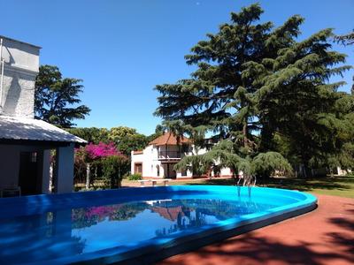 Alquilo Cosona Quinta . En Moreno Centro . 8000m2 Pileta
