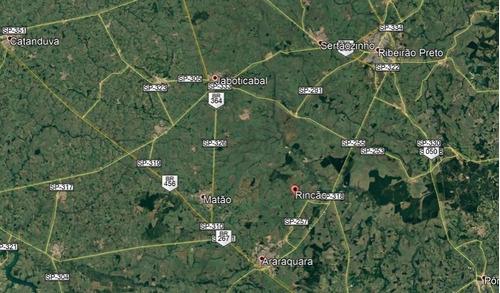 Fazenda Para Venda No Municipio De Rincao-sp, Distrito Taquaral Com 55 Alqueires Sendo 37 Alqueires Em Cana Arrendada A 60 Toneladas, Beira Da Rodovia - Fa00164 - 69366372