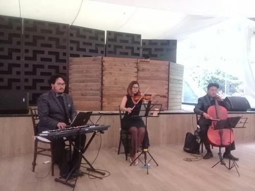 Imagen 1 de 5 de Violines Para Misa Y Eventos Sociales Cuerdas, Piano Y Voz