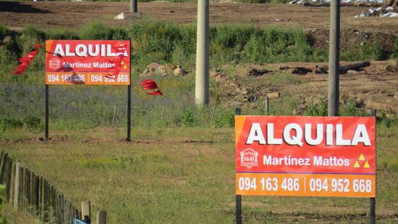 Terrenos Industria Y Logística Hay Varios Alquiler Y Venta