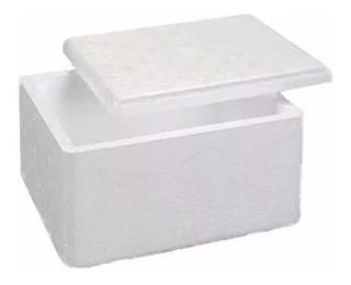 Kit 10 Unidades Da Caixa - Térmica De Isopor De 1 Litro