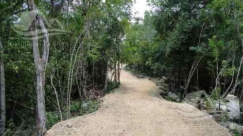 Terreno En Venta En Tulum Mexico