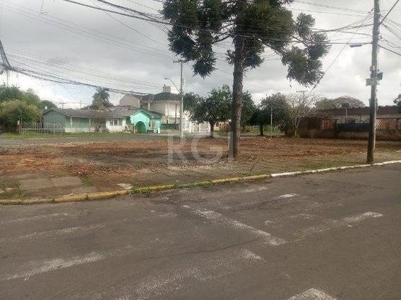 Terreno Em Harmonia - Ot7192