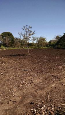 Fazenda A Venda Em São Gabriel Do Oeste - Ms (dupla Aptidão) - 504