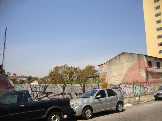 Terreno Bem Localizado - 430