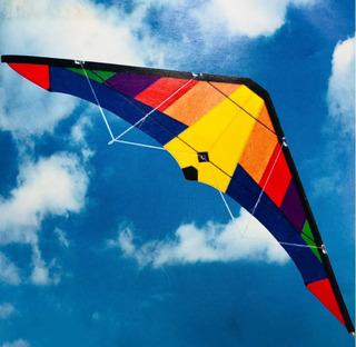 Papalote Cometa 2 Lineas Acrobatico Nylon Resistente Rainbow