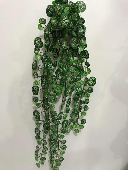 Folhagem Verde Modelo Algodão