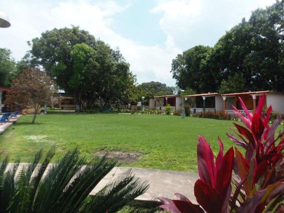 Local En San Felipe Rah: 19-310