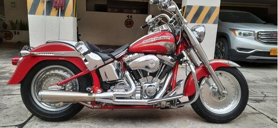 Harley Davidson Fat Boy Cvo Seagle