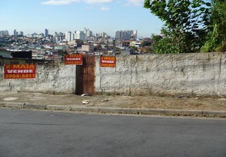 Terreno Residencial À Venda, Vila Palmeiras, São Paulo. - Te0025