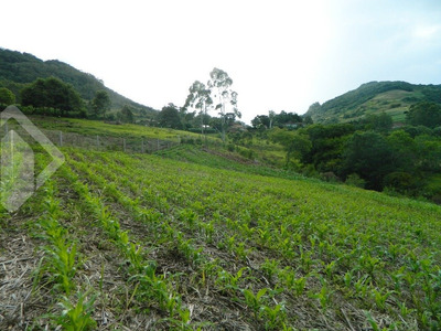 Chacara/fazenda/sitio - Centro - Ref: 214553 - V-214553