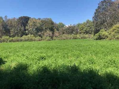 Terreno En Venta, Pátzcuaro, Michoacán De Ocampo