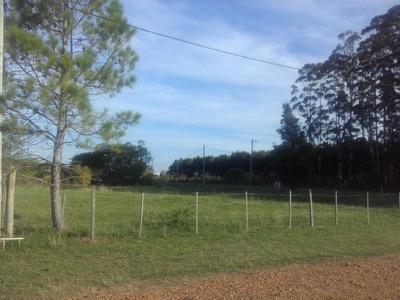 Lote En Venta . Federacion Norte Entre Rios