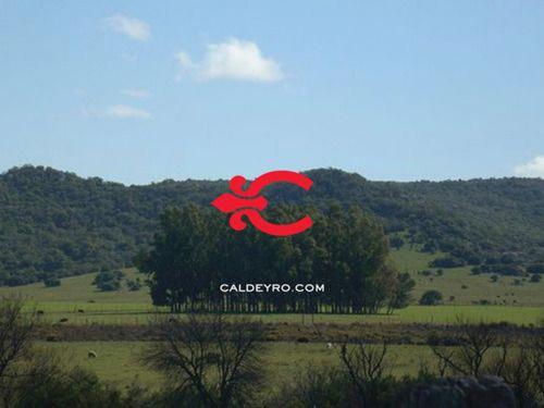 Campo En Cerros Del Penitente Ref. 2509