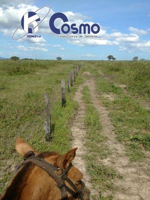 Fazenda , A Venda, Em Jaraguari - Campo Grande - Ms - Oportunidader - Fa00038 - 32867741