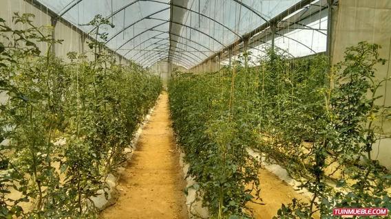 Haciendas - Fincas En Venta 04143446867