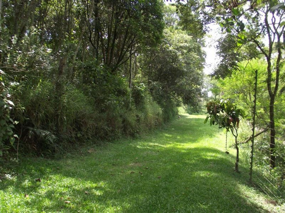 Terreno Residencial À Venda, Vila Real Moinho Velho, Embu Das Artes - Te0772. - Te0772