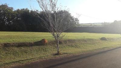 Terreno Residencial À Venda, Condomínio Vale Do Lago, Sorocaba. - Te4017