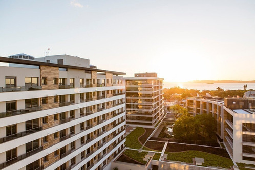 Apartamento - Tristeza - Ref: 387394 - V-rp10454