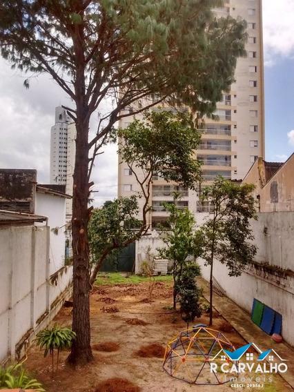 Terreno - Venda Ou Locação - Vila Mascote - 367
