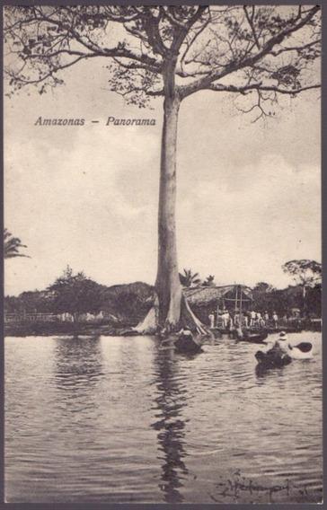 Amazonas - Panorama - 05091922