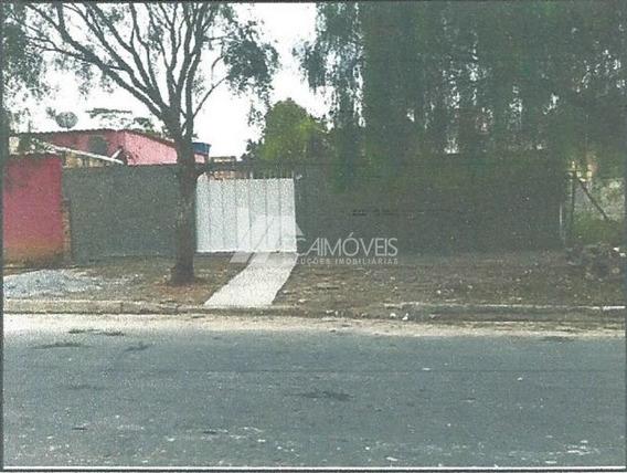 Avenida Flamboyant, Itacolomi, Betim - 132538