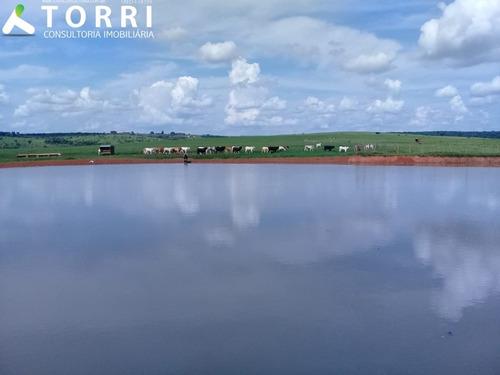 Fazenda À Venda Região De Bauru - Fa00132 - 69211844
