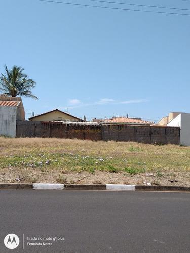 Imagem 1 de 1 de Terreno Padrão Em Cristais Paulista - Sp - Te0117_rncr