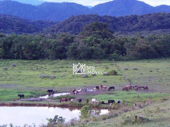 Fazenda No Vale Do Ribeira À Venda, 242 Hectares Por R$ 2.500.000 - Fa0001