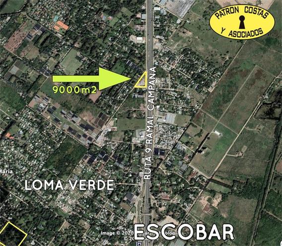 2557ro Terreno Industrial 9000m2 Sobre Panamericana Escobar
