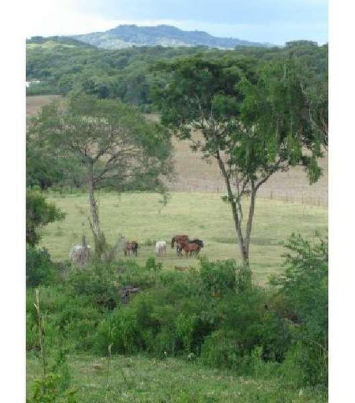 Lencke Vende - Muy Buenas 3000 Hectareas En Provincia De Salta Sobre Ruta 9