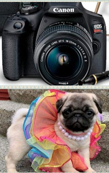 Câmera Fotográfica Canon Ou Nikon