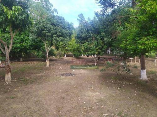 Imagem 1 de 18 de Chácara Com 3 Dormitórios À Venda, 5000 M² Por R$ 380.000,00 - Borda Do Campo - Cunha/sp - Ch0587